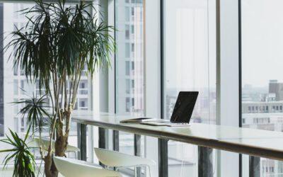 Energielabels en energie-ontwikkelingen voor bedrijven